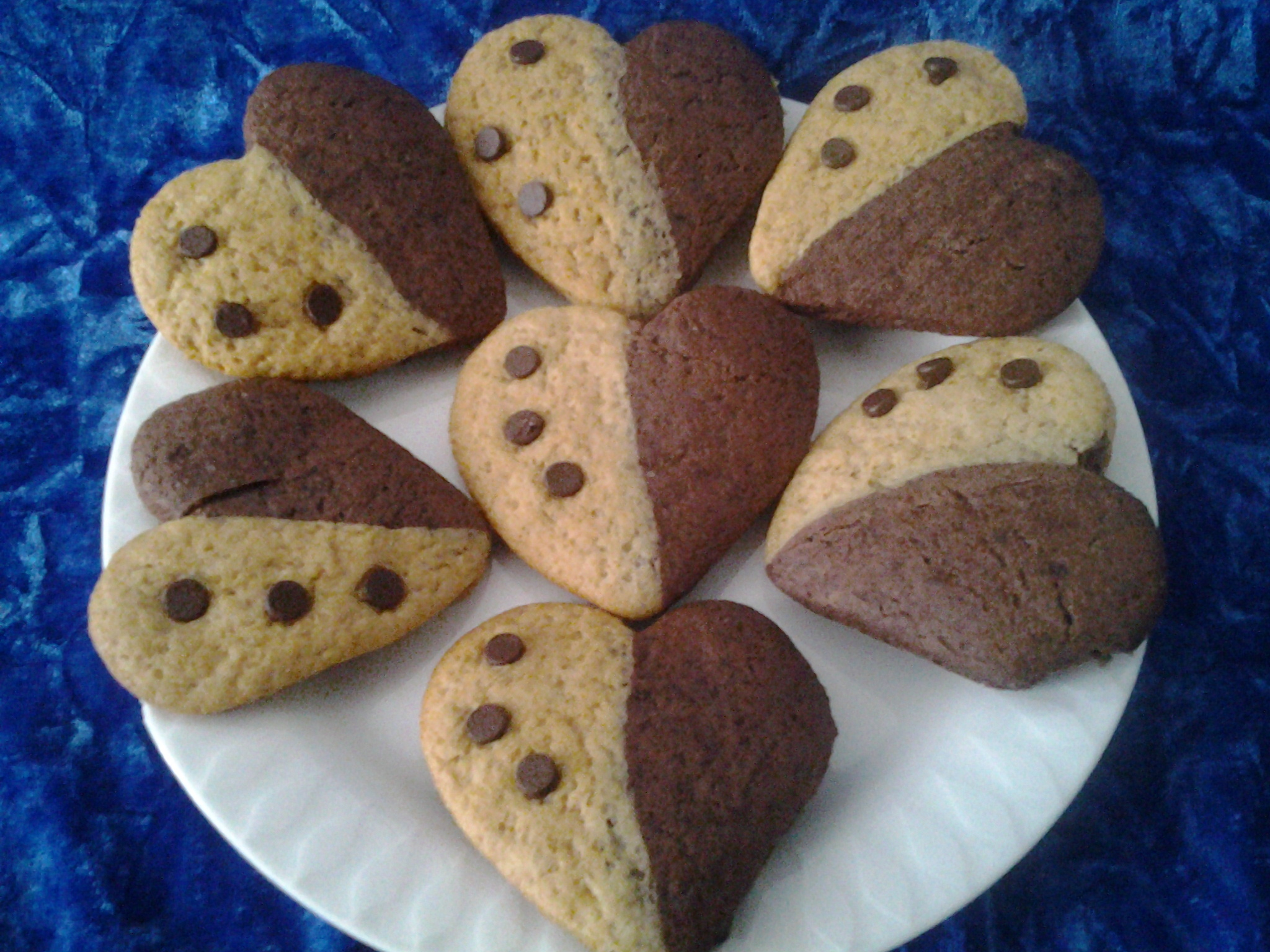 Biscuits bigout